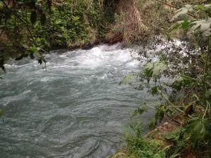 28 water flowing 2