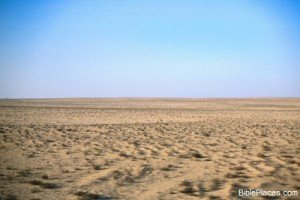 8Sinai_desert,_57-26tb